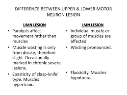 upper vs lower motor neuron hamle