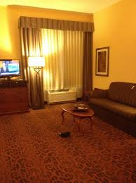 Tv Is Kid Of Small For The Small Room But It Swivel To The Bed Side And To The Living Room Area Picture Of Hampton Inn West Palm Beach Central Airport