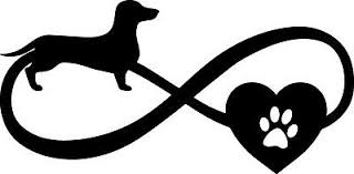5inch Doxie Love Infinity Dachshund Heart Paw Decal Window Sticker Car Dog Cup 3 50 Picclick