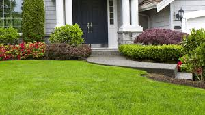 Get The Best Professional Lawn Care Conway Arkansas Can Offer