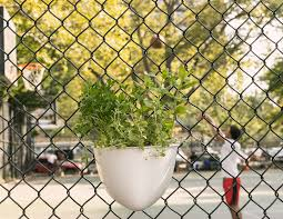 Plant Seads Turns Chain Link Fence Into Vertical Gardens