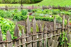 likable beautiful vegetable gardens