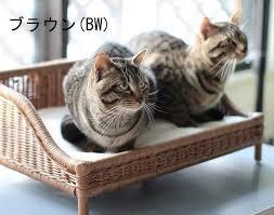 koreda i show cute all rattan sofa bed