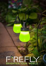 Evergreen Enterprises Brighten Your World With Firefly