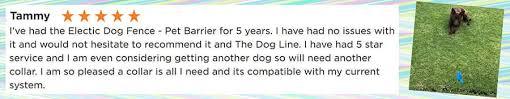 Best Hidden Dog Fence Australia S Safest By The Dog Line