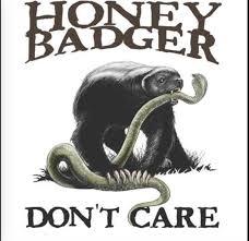 honey badger don t care honey badger