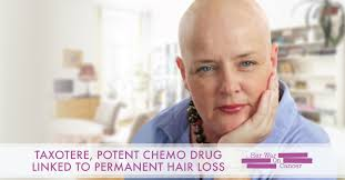 taxotere potent chemo linked to