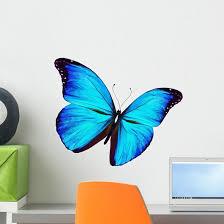 Blue Butterfly Flying White Wall Decal Wallmonkeys Com