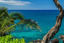 Blue Maui Photographers - Home | Facebook