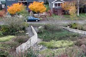 rebates for building a rain garden