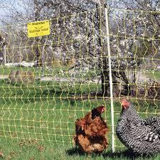 Chicken Net 12 48 3 Premier1supplies