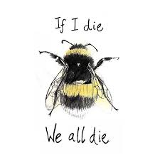 images tagged savethebee on instagram