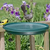 Duncraft Com Clamp Mount Bird Bath Green
