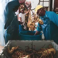 Lobster Got a Break on China Tariffs ...