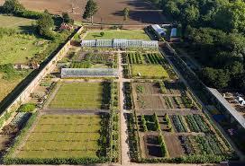 kitchen garden in victorian style