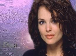 Dina Meyer Hd Wallpaper Ada Large Wallpaper Photo Shared By Anderson162 |  Photo Gallery Images