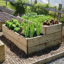 raised vegetable beds are simple to