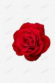 Lovepik صورة Png 401398290 Id الرسومات بحث صور وردة حمراء الزهور