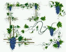vine border free vector 6 184