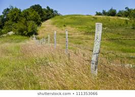 Barbwire Fence Post Images Stock Photos Vectors Shutterstock