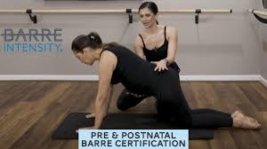 prenatal and postnatal instructor