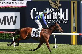 Caulfield Cup winners brother lines-up ...