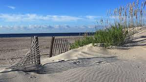 Shore Thing Weathered Fence Morning Stock Footage Video 100 Royalty Free 2892970 Shutterstock