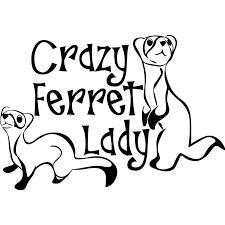13 5 9 4cm Crazy Ferret Lady Decal Window Bumper Sticker Car Decor Pet Ferrets Love Furry Vinyl Hobby Car Bumper Sticker Car Stickers Aliexpress