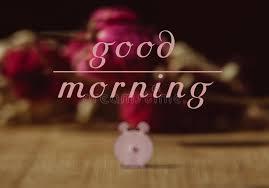 good morning stock photos 71