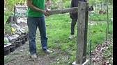 Diy Post Puller Made With A Chain Hoist Remove Metal Or Wood Fence Post W O Digging Youtube