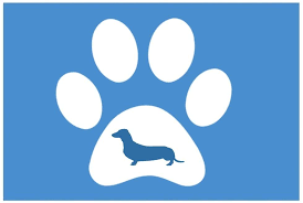 Amazon Com Paw Print Dachshund 6 Vinyl Sticker Decal Wall Car Laptopg29 Animals Pets Dogs Puppies Love K9 Canine Arts Crafts Sewing