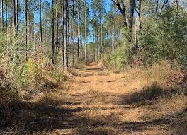 Claude Smith Rd, Magnolia, MS 39652 - Land For Sale and Real ...