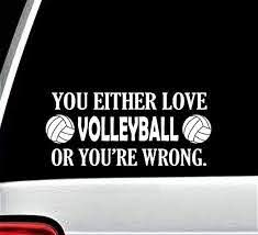 Amazon Com Best Design Amazing Volleyball Funny Novelty Decal Sticker For Car Window 8 Inch And Stick Decals Made In Usa Home Kitchen