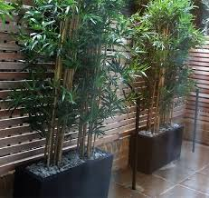 Best Artificial Bamboo Plants Perfect For Outdoor Privacy Screens Posh Pennies