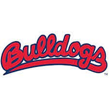 Ncaa Rico Industries Die Cut Vinyl Decal Fresno State Bulldogs Sports Outdoors Decals
