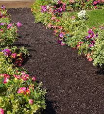 permanent mulch recycled rubber pathway