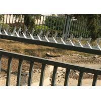 Galvanized Razor Wall Security Spikes Burglar Proof Fence Spikes For Perimeter Barbedwirerazorwire