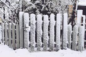 Fence Garden Fence Snow Grey Input Wood Fence Garden Wood Blocked Plant Winter Pikist