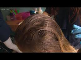 washington pany checks for lice in