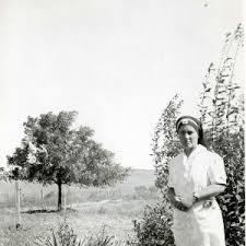 Cook family history     idahopress.com