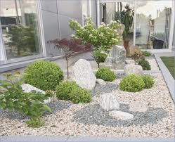 plant fur front garden with stones