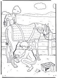 Paard Verzorgen Kleurplaten Paarden