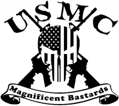 Usmc United States Marine Corps Magnificent Bastards Punisher Skull Us Flag Crossed Ar15 Guns Car Or Truck Window Decal Sticker Or Wall Art All Time Auto Graphics