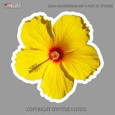 Hawaiian Hibiscus Yellow Flower Sticker Car Window Truck Vinyl Decal 3 5 Ebay