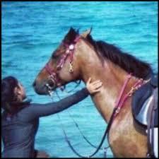 صور بنات مع حصان