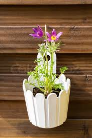 Outdoor Flower Pot Hanging On Wooden Stock Image Colourbox