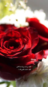 Be On Twitter You Look Like The Rest Of My Life Photographyksa