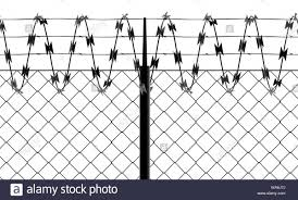 Barbed Wire And Fence Front View Of A Wire Mesh Black And White White Background And Drawing In Black Protection Private Place No Access Stock Photo Alamy