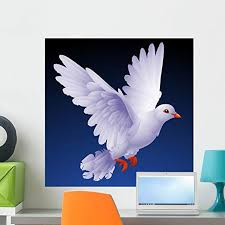 Amazon Com Wallmonkeys Vector White Dove Wall Decal Peel And Stick Graphic Wm213979 24 In H X 24 In W Home Kitchen