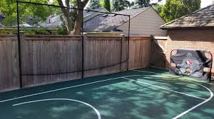 Toronto Backyard Basketball Court Landscape Modern With Tree Services Pickle Ball